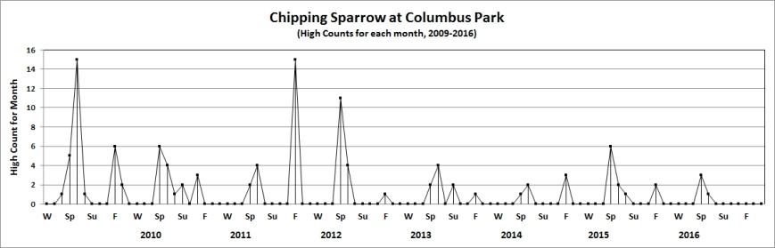 colchippingsparrow