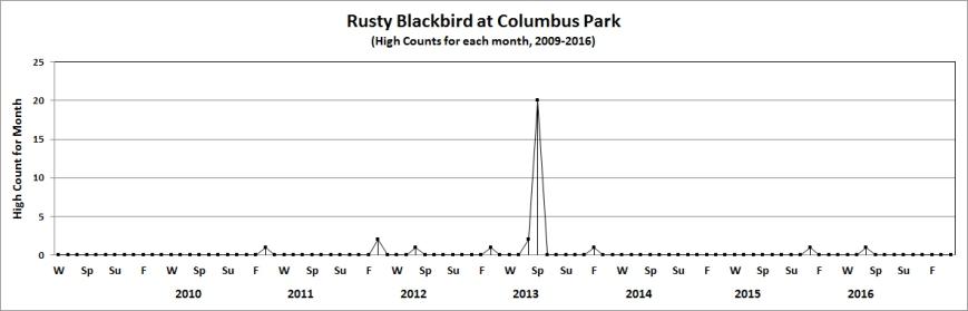 colrustyblackbird