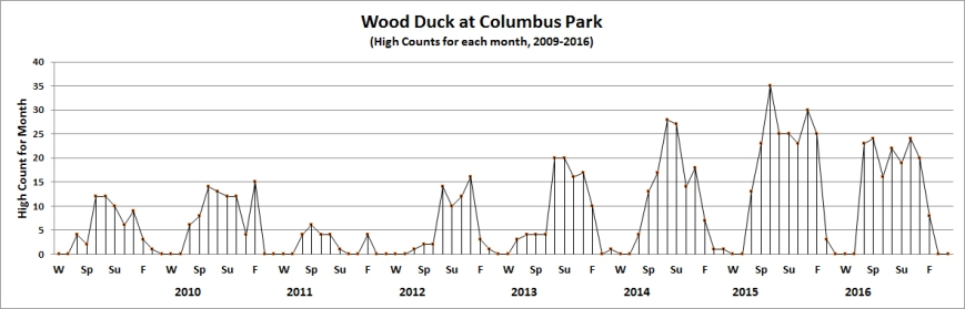 colwoodduck